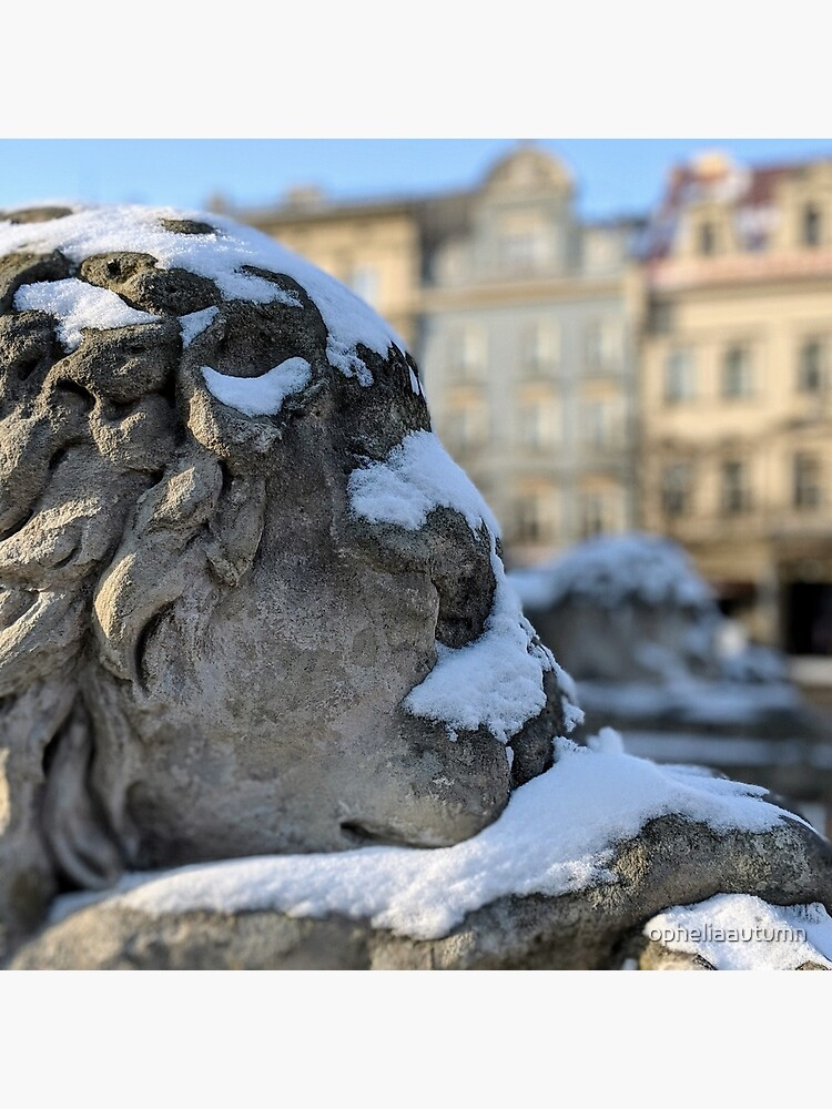 Cold lion in Krakow by opheliaautumn