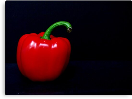 Red Bell Pepper by Gloria Abbey