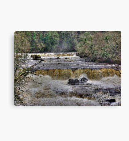 The Falls - River Ure Canvas Print