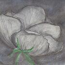 Nite White Rose by Christina Sauber