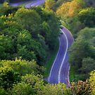 Winding Road by Anthony Thomas