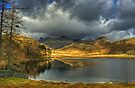 Blea Tarn ,A January View by Jamie  Green