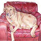 Dog in Chair by whiterabbitart