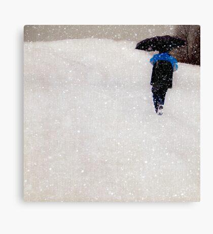 Snow is Fleeting Canvas Print
