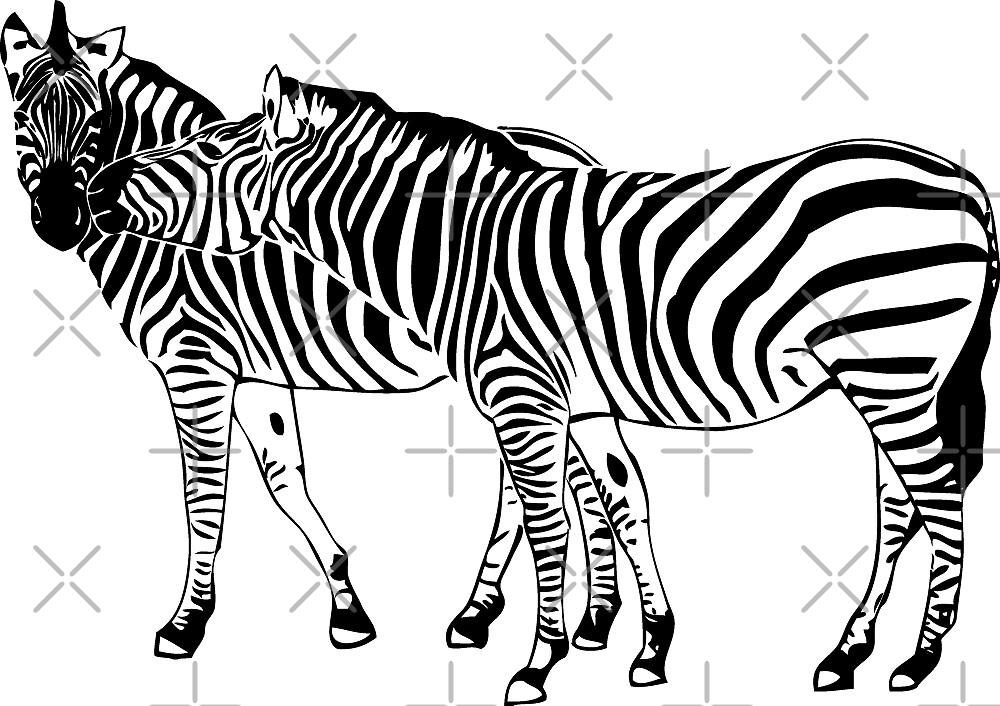 Zebra Love by Port-Stevens