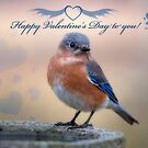 Happy Valentine's Day to you! by Bonnie T.  Barry