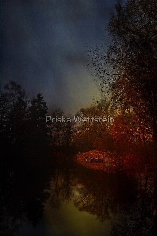 Down at the pond by Priska Wettstein