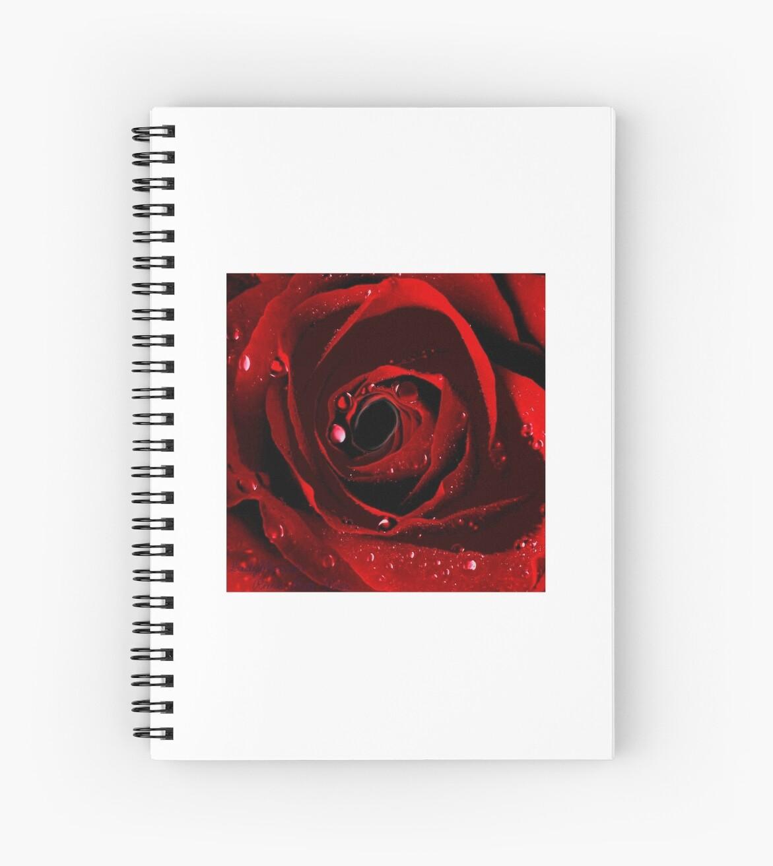 Ladyblossem.   between the Roses.    Rare Red Rose by Ladyblossem