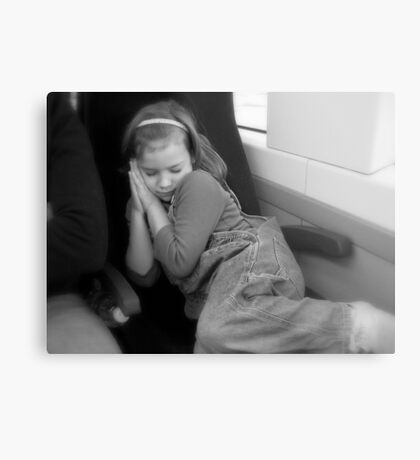 Snoozing on a Train Ride Metal Print
