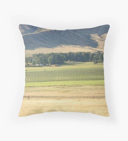 Alfalfa Field in Montana Throw Pillow
