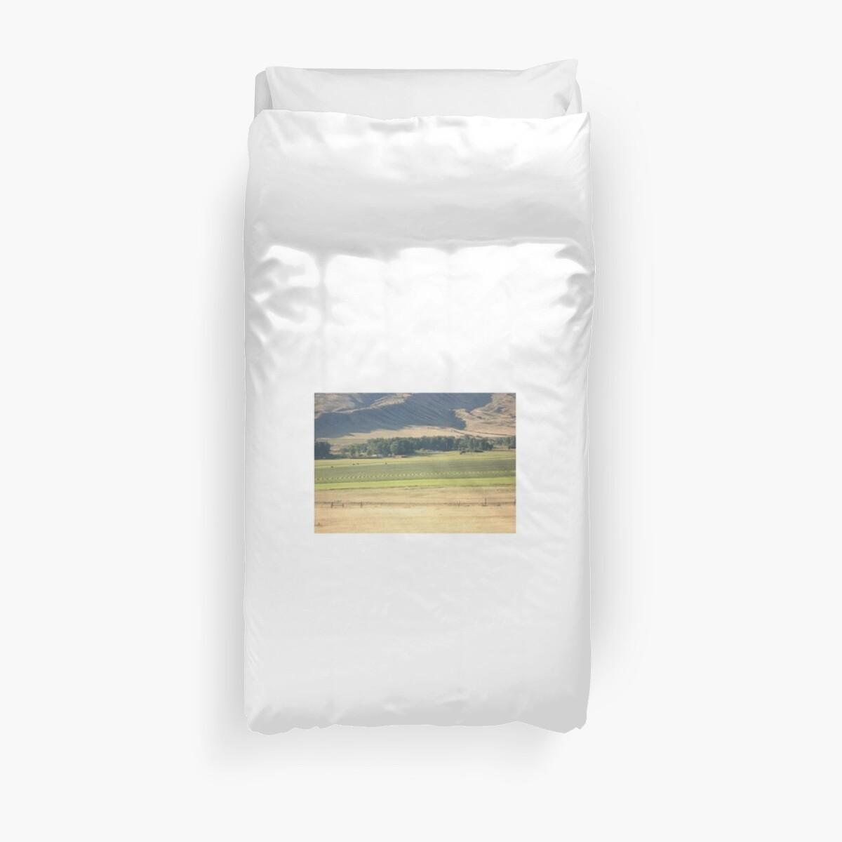 Alfalfa Field in Montana by May Lattanzio