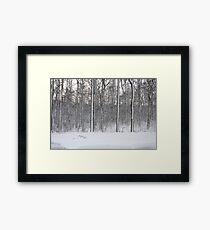 Snowstorm Aftermath Framed Print