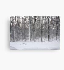 Snowstorm Aftermath Canvas Print