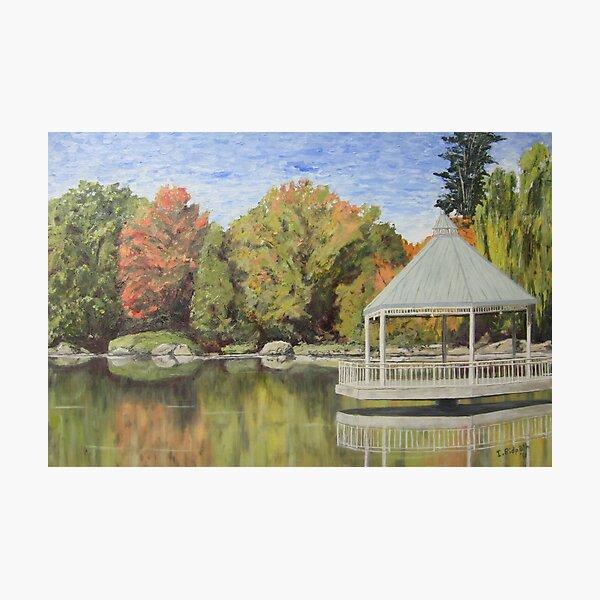 Milton Millpond in Autumn - (c) Ian Ridpath 2011 Photographic Print