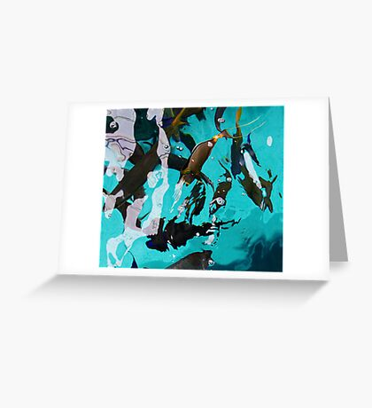 Fish From Above Greeting Card