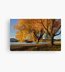 Fall trees beside lake Canvas Print