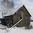 Barn in January by LaBud
