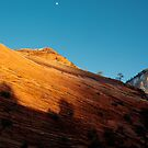 Rising Moon, Deepening Shadows by Clayhaus