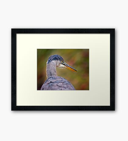 A different view...  Framed Print