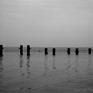 Silence. by StephanieHadley
