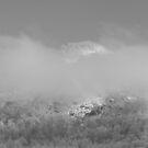 Cedar Cliffs by Forrest Tainio
