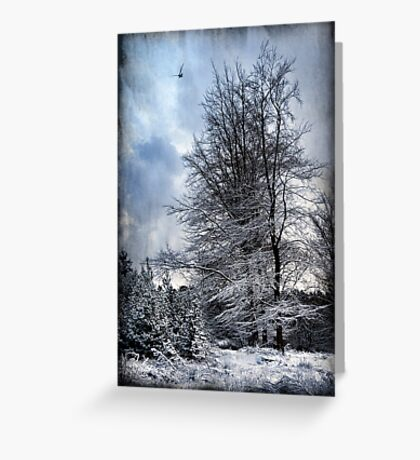 Winter's Day Greeting Card