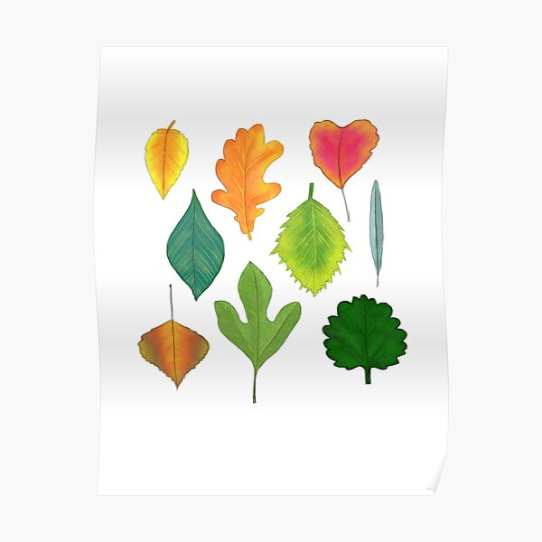 Enchanted multicolour autumnal leaves Poster