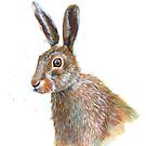 Hare by Jenny Urquhart