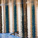 Stripes and Ducks by Lynne Morris