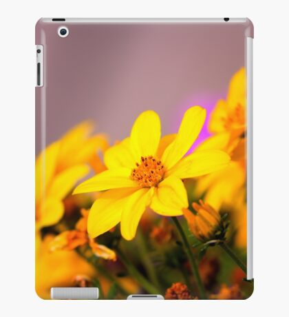 Look This Way iPad Case/Skin