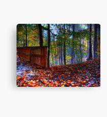 Autumn Ravine  Canvas Print