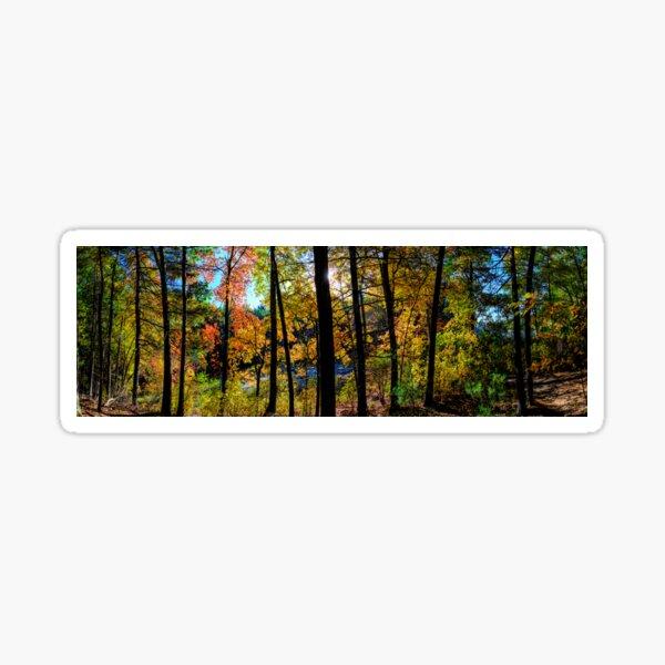 Walden Pond Autumn Forest  in Concord Massachusetts Sticker