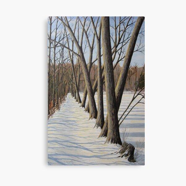 Millpond Winter Trail -2 (c) Ian Ridpath 2010 Canvas Print