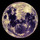 Full Moon by Rupert Russell