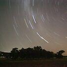 Serpentine Star Trails by Stephen Horton