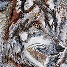 Gray Wolf Watches and Waits by JMcCombie