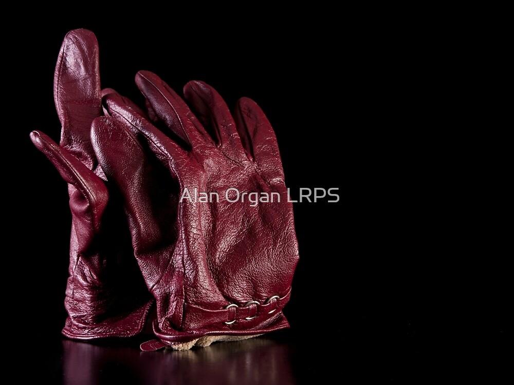 Gloves by Alan Organ LRPS