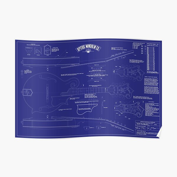 Apitius Mandolin Blueprint Poster - Blue Background Poster