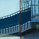 A Deck by Lynn Wiles