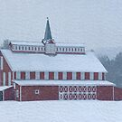 Red Barn in Snowstorm by Michael  Dreese
