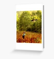 Freedom flighter ( the one that got away) Greeting Card