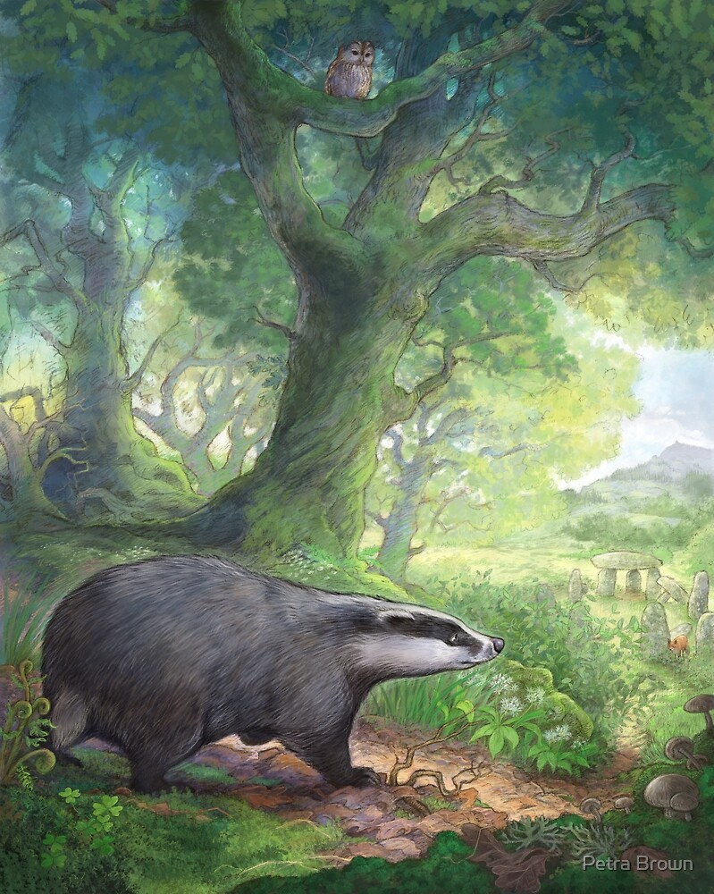 Badger in the woods by Petra Brown