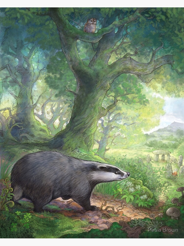 Badger in the woods by mydododied