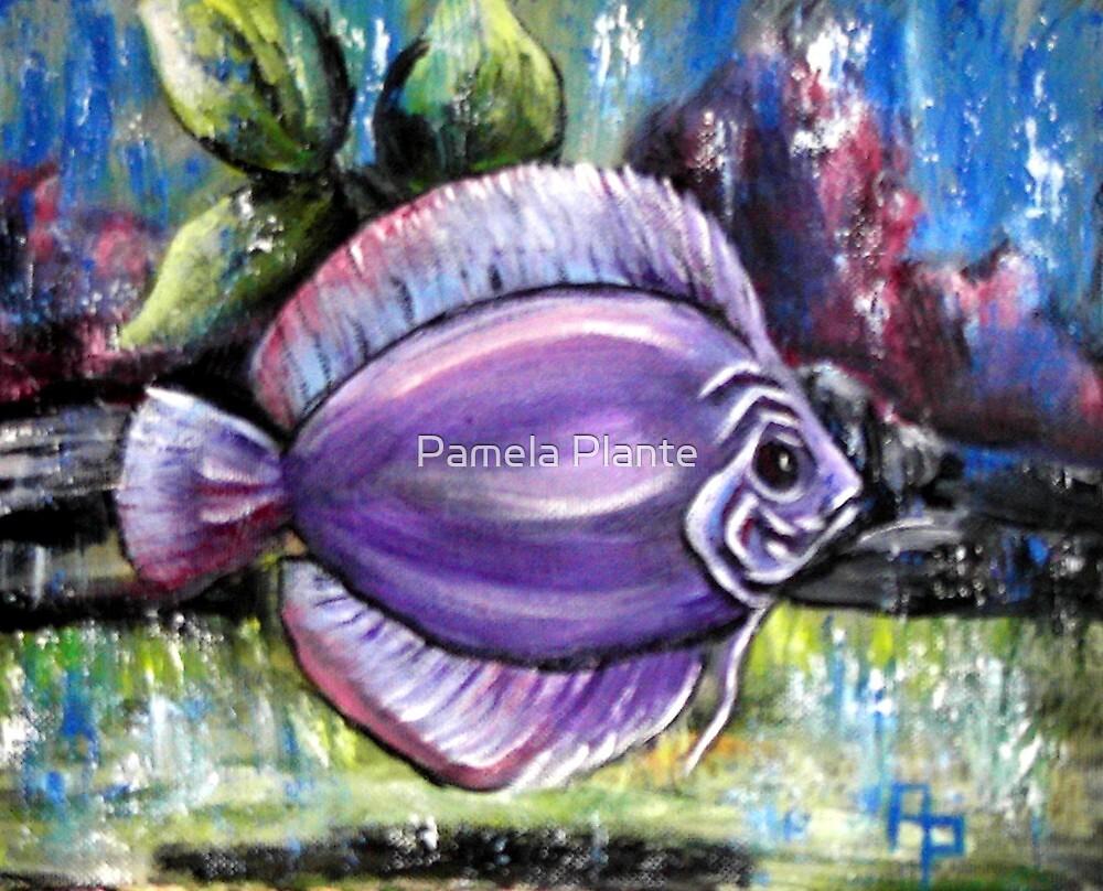 Here Fishy- Fishy by Pamela Plante