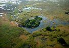 Aerial over Okavango Delta (1) by Margaret  Hyde