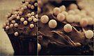 cupcake pearls by Angel Warda