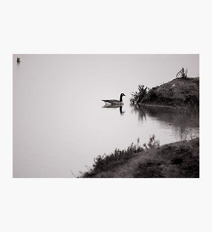 Foggy Calm Photographic Print