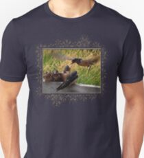 Lunch is Served to the Fourth Baby Barn Swallow Unisex T-Shirt
