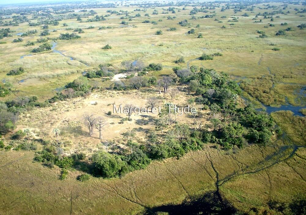 Aerial of Okavango Delta (3) by Margaret  Hyde