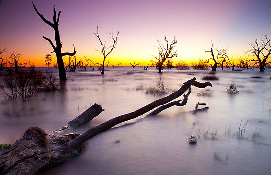 Lake Menindee 003 by David  Lange